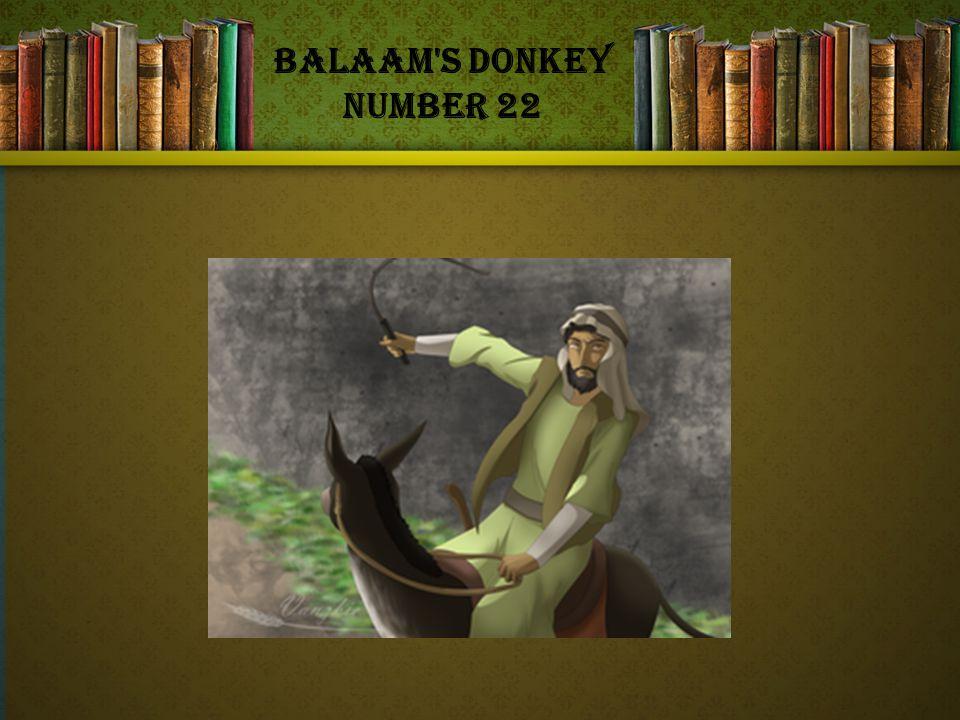 Balaam s Donkey Number 22
