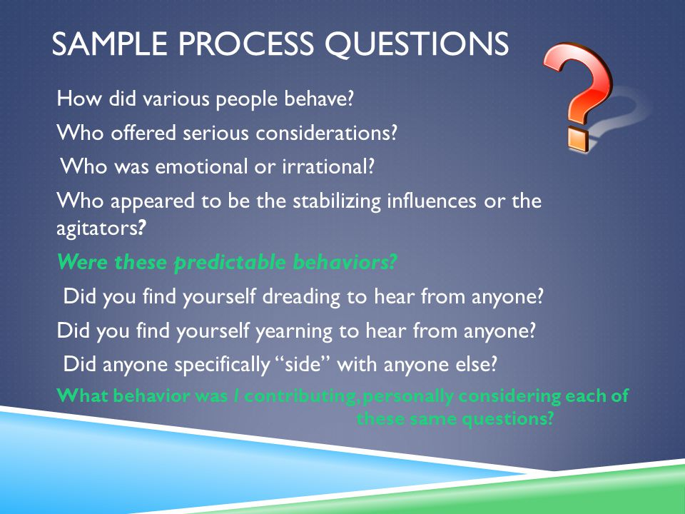 SAMPLE PROCESS QUESTIONS How did various people behave.