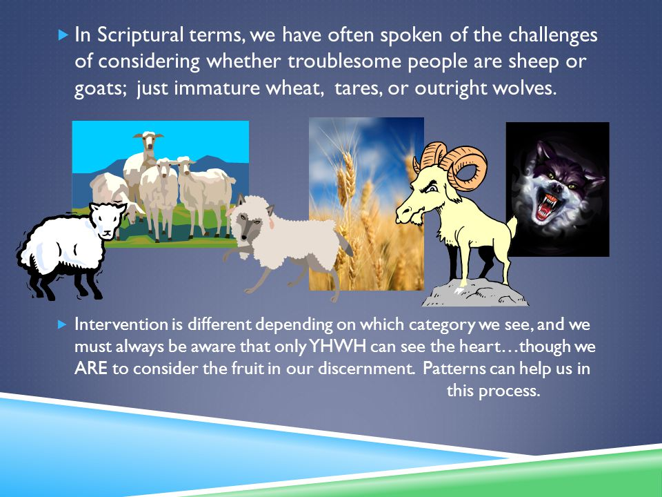  In Scriptural terms, we have often spoken of the challenges of considering whether troublesome people are sheep or goats; just immature wheat, tares, or outright wolves.