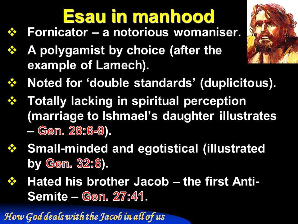 Esau in manhood