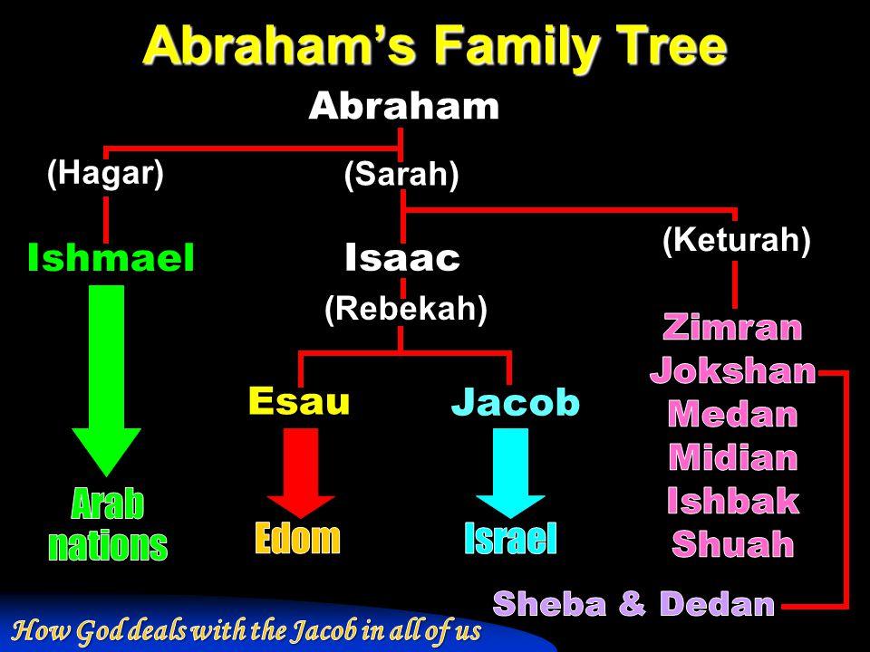 Abraham's Family Tree Abraham Ishmael Isaac Esau Jacob (Hagar) (Sarah) (Keturah) (Rebekah)