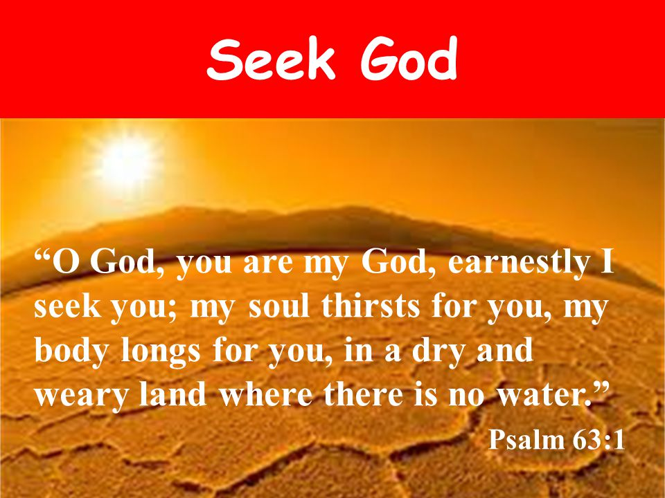 Seek God O God, you are my God, earnestly I seek you; my soul thirsts for you, my body longs for you, in a dry and weary land where there is no water. Psalm 63:1