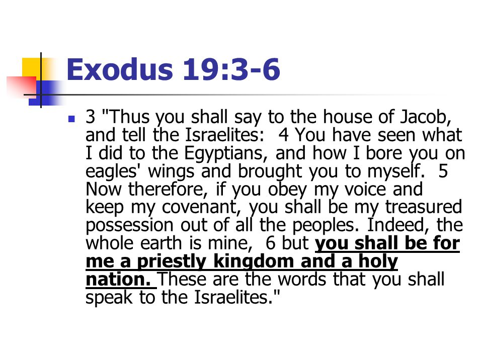 Exodus 19:3-6 3 Thus you shall say to the house of Jacob, and tell the Israelites: 4 You have seen what I did to the Egyptians, and how I bore you on eagles wings and brought you to myself.