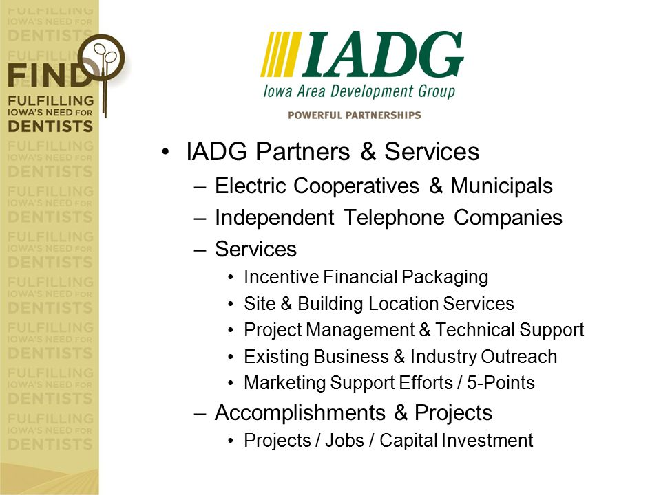 IADG Partners & Services –Electric Cooperatives & Municipals –Independent Telephone Companies –Services Incentive Financial Packaging Site & Building