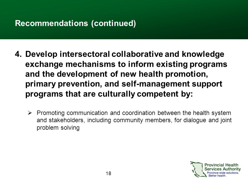 18 Recommendations (continued) 4.Develop intersectoral collaborative and knowledge exchange mechanisms to inform existing programs and the development of new health promotion, primary prevention, and self-management support programs that are culturally competent by:  Promoting communication and coordination between the health system and stakeholders, including community members, for dialogue and joint problem solving