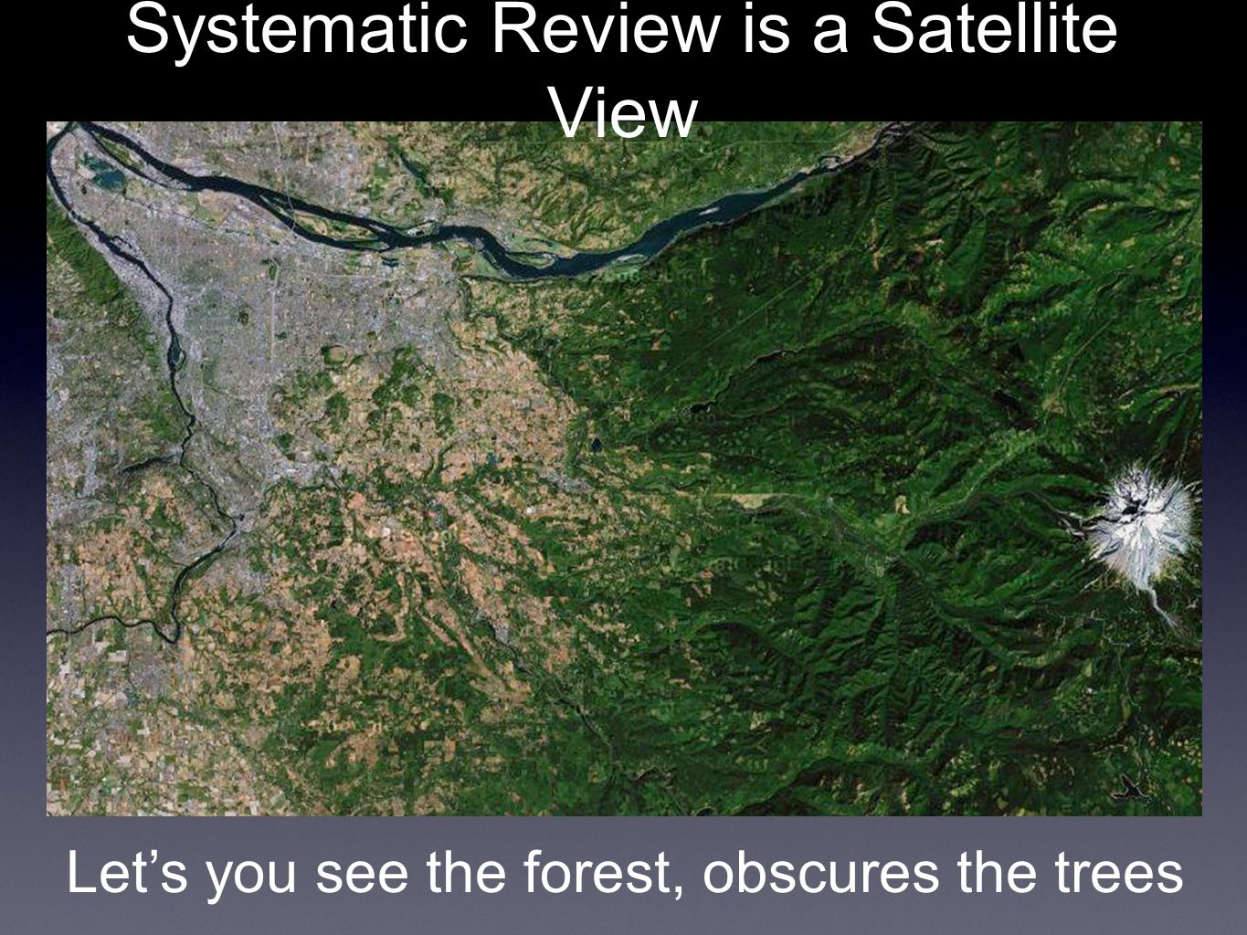Systematic Review is a Satellite View Let's you see the forest, obscures the trees