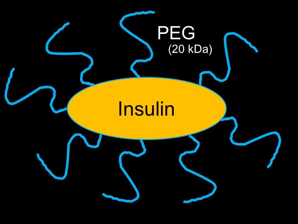 Insulin PEG (20 kDa)