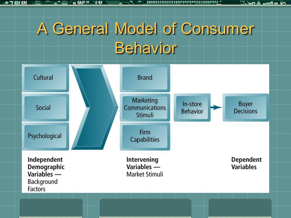 A General Model of Consumer Behavior