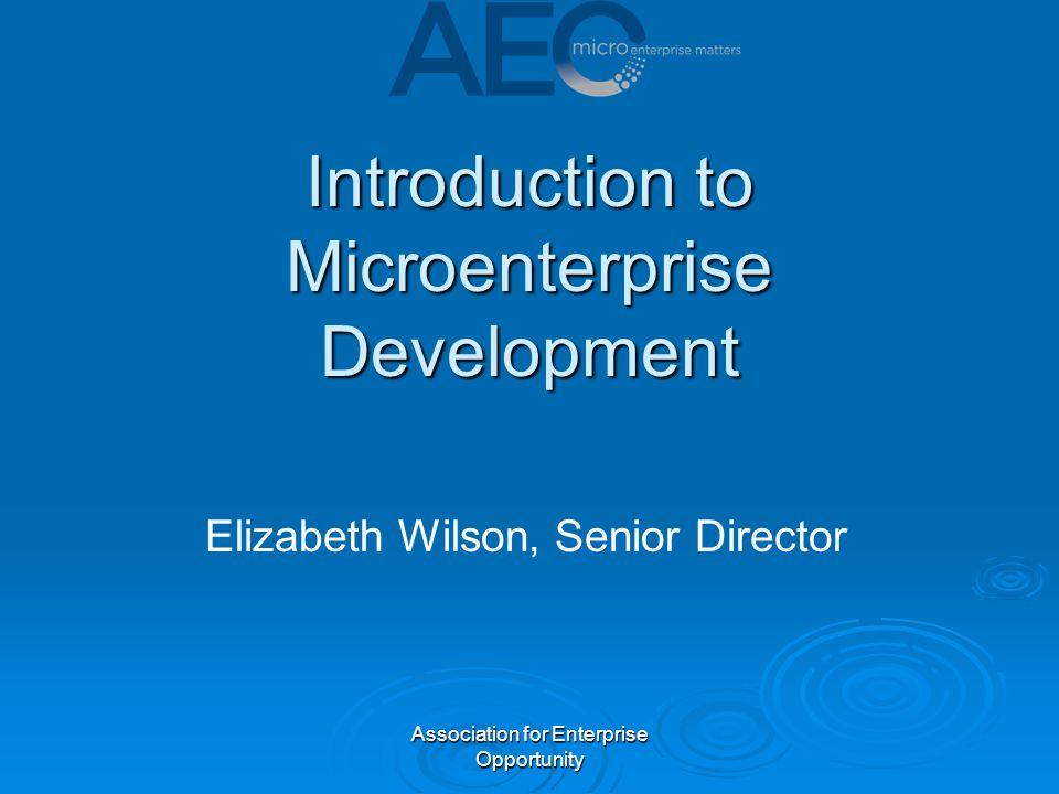 Association for Enterprise Opportunity Introduction to Microenterprise Development Elizabeth Wilson, Senior Director
