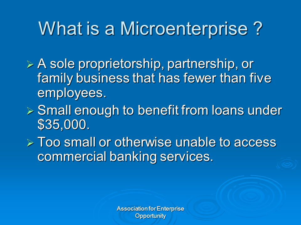 Association for Enterprise Opportunity What is a Microenterprise ?  A sole proprietorship, partnership, or family business that has fewer than five e
