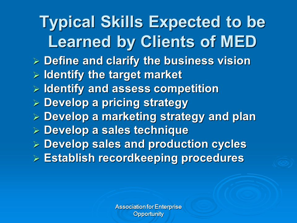 Association for Enterprise Opportunity Typical Skills Expected to be Learned by Clients of MED  Define and clarify the business vision  Identify the