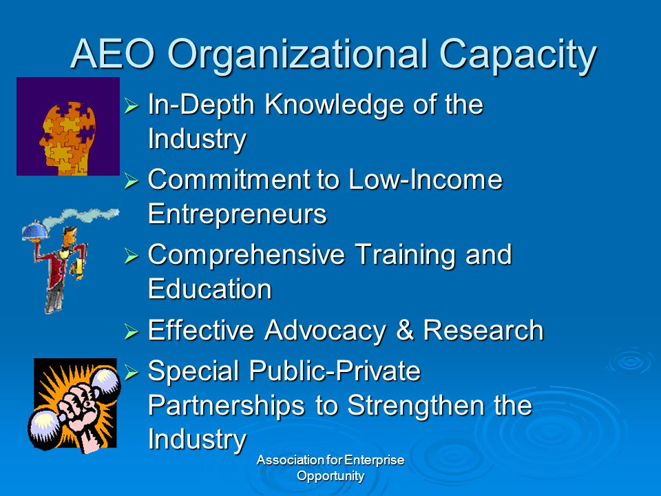 Association for Enterprise Opportunity AEO Organizational Capacity  In-Depth Knowledge of the Industry  Commitment to Low-Income Entrepreneurs  Comprehensive Training and Education  Effective Advocacy & Research  Special Public-Private Partnerships to Strengthen the Industry