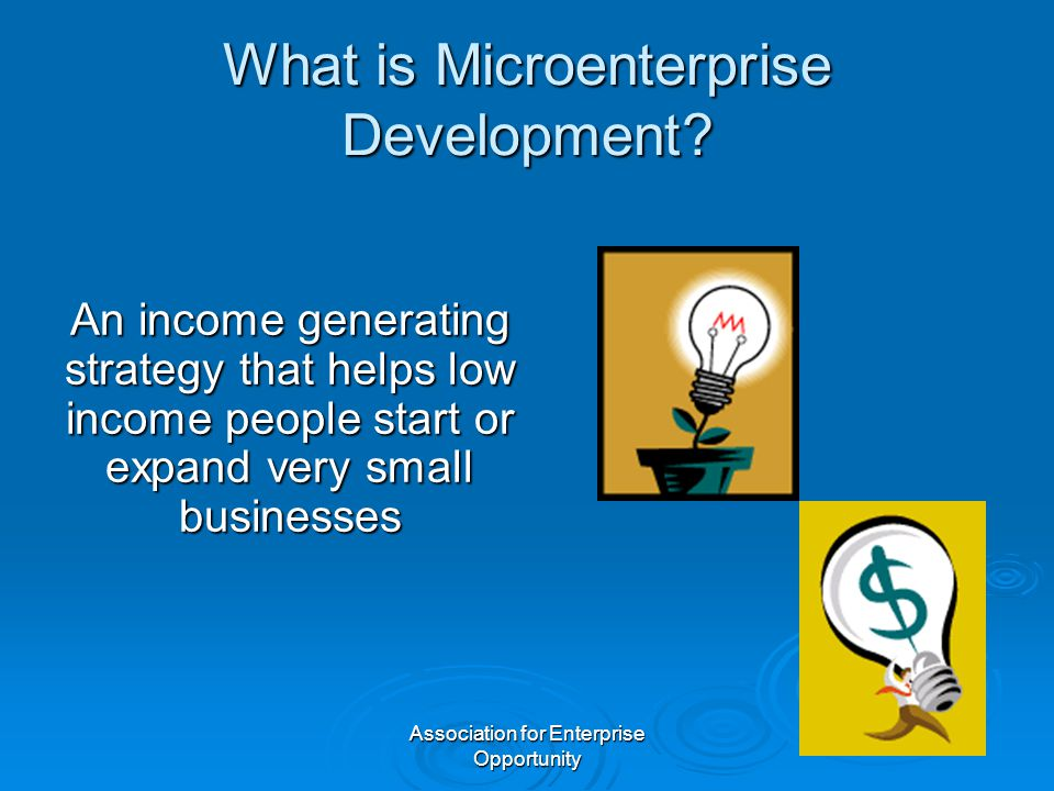 Association for Enterprise Opportunity What is Microenterprise Development? An income generating strategy that helps low income people start or expand