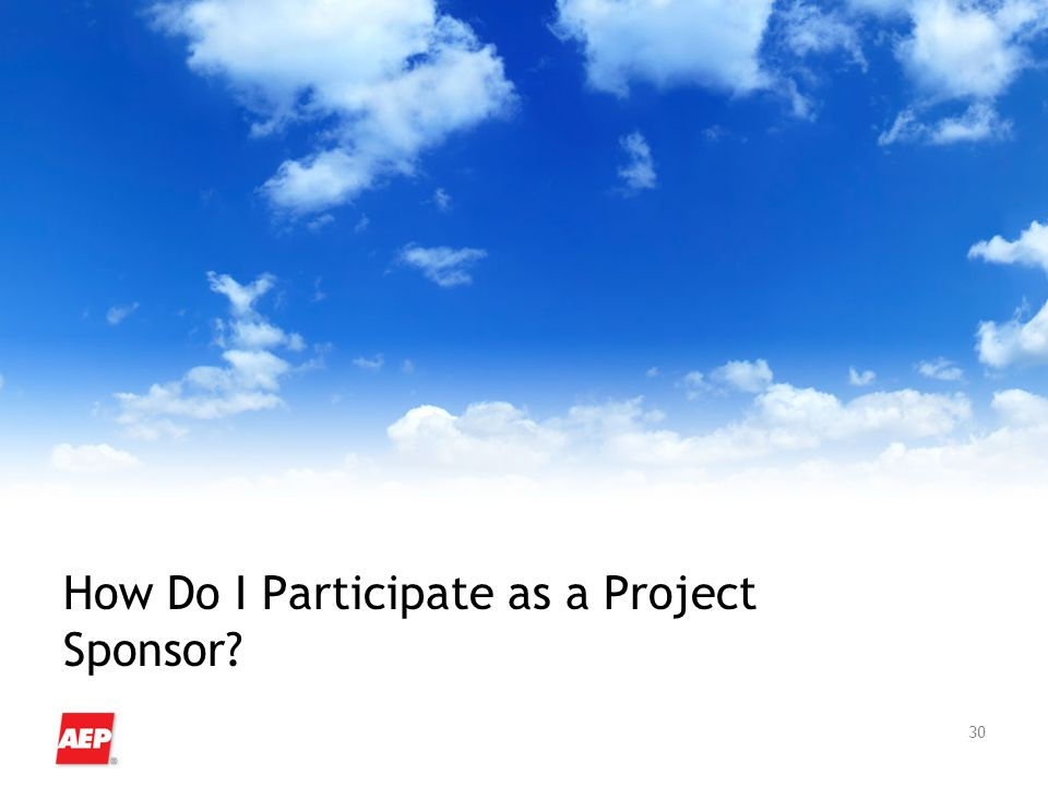 30 How Do I Participate as a Project Sponsor?