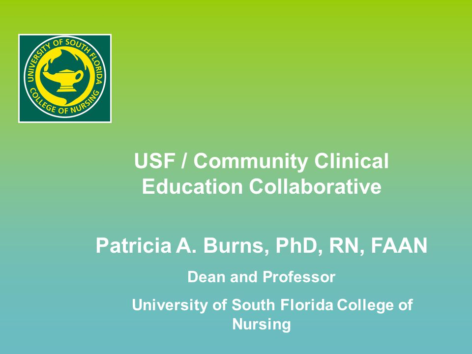 USF / Community Clinical Education Collaborative Patricia A.