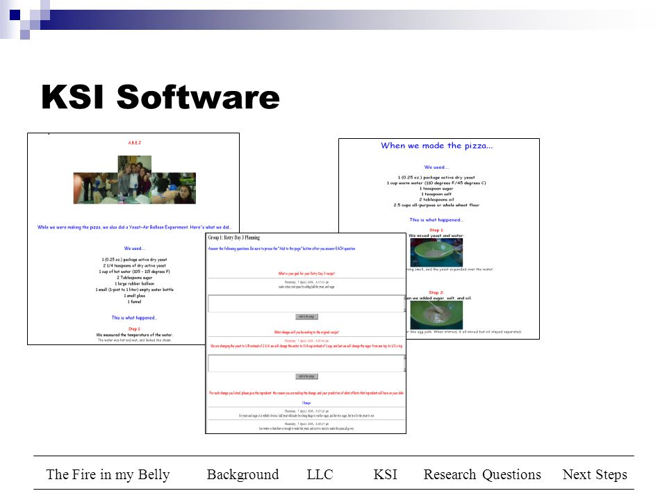 The Fire in my BellyBackgroundLLCKSIResearch QuestionsNext Steps KSI Software