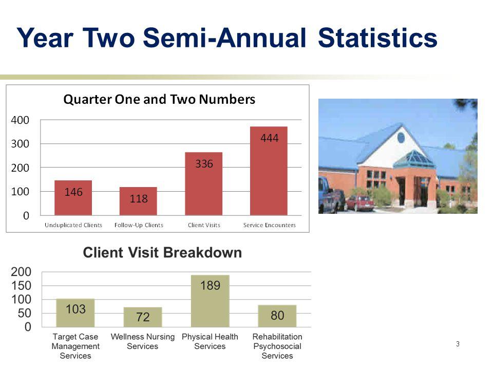 3 Year Two Semi-Annual Statistics