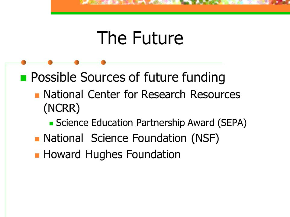 The Future Possible Sources of future funding National Center for Research Resources (NCRR) Science Education Partnership Award (SEPA) National Scienc