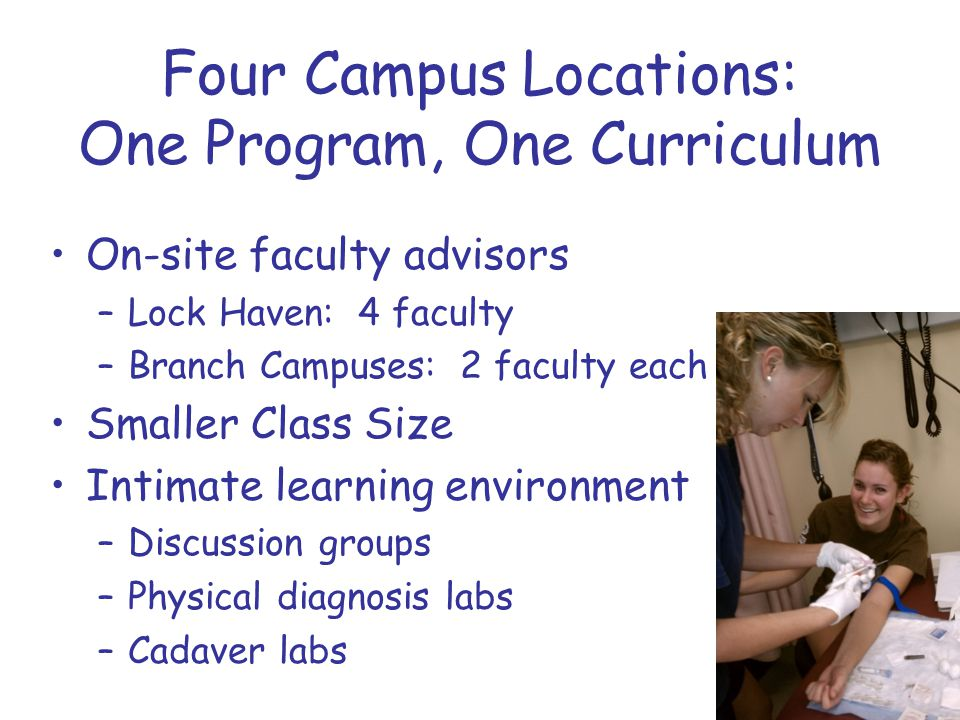 Four Campus Locations: One Program, One Curriculum On-site faculty advisors –Lock Haven: 4 faculty –Branch Campuses: 2 faculty each Smaller Class Size