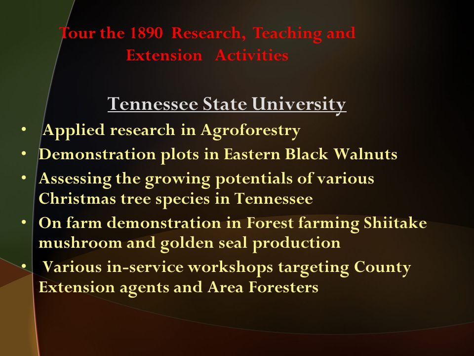 Tennessee State University Applied research in Agroforestry Demonstration plots in Eastern Black Walnuts Assessing the growing potentials of various Christmas tree species in Tennessee On farm demonstration in Forest farming Shiitake mushroom and golden seal production Various in-service workshops targeting County Extension agents and Area Foresters Tour the 1890 Research, Teaching and Extension Activities