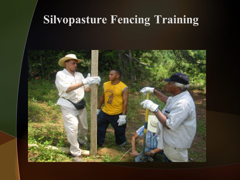 Silvopasture Fencing Training