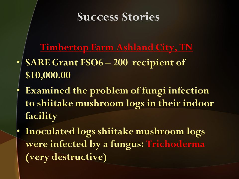 Success Stories Timbertop Farm Ashland City, TN SARE Grant FSO6 – 200 recipient of $10,000.00 Examined the problem of fungi infection to shiitake mushroom logs in their indoor facility Inoculated logs shiitake mushroom logs were infected by a fungus: Trichoderma (very destructive)