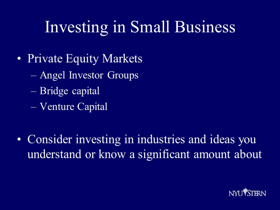 Investing in Small Business Private Equity Markets –Angel Investor Groups –Bridge capital –Venture Capital Consider investing in industries and ideas you understand or know a significant amount about