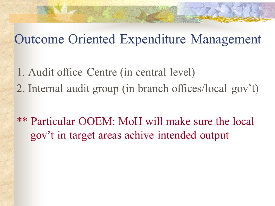 Outcome Oriented Expenditure Management 1. Audit office Centre (in central level) 2. Internal audit group (in branch offices/local gov't) ** Particula