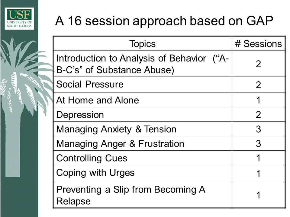 A 16 session approach based on GAP Topics# Sessions Introduction to Analysis of Behavior ( A- B-C's of Substance Abuse) 2 Social Pressure 2 At Home and Alone 1 Depression 2 Managing Anxiety & Tension 3 Managing Anger & Frustration 3 Controlling Cues 1 Coping with Urges 1 Preventing a Slip from Becoming A Relapse 1