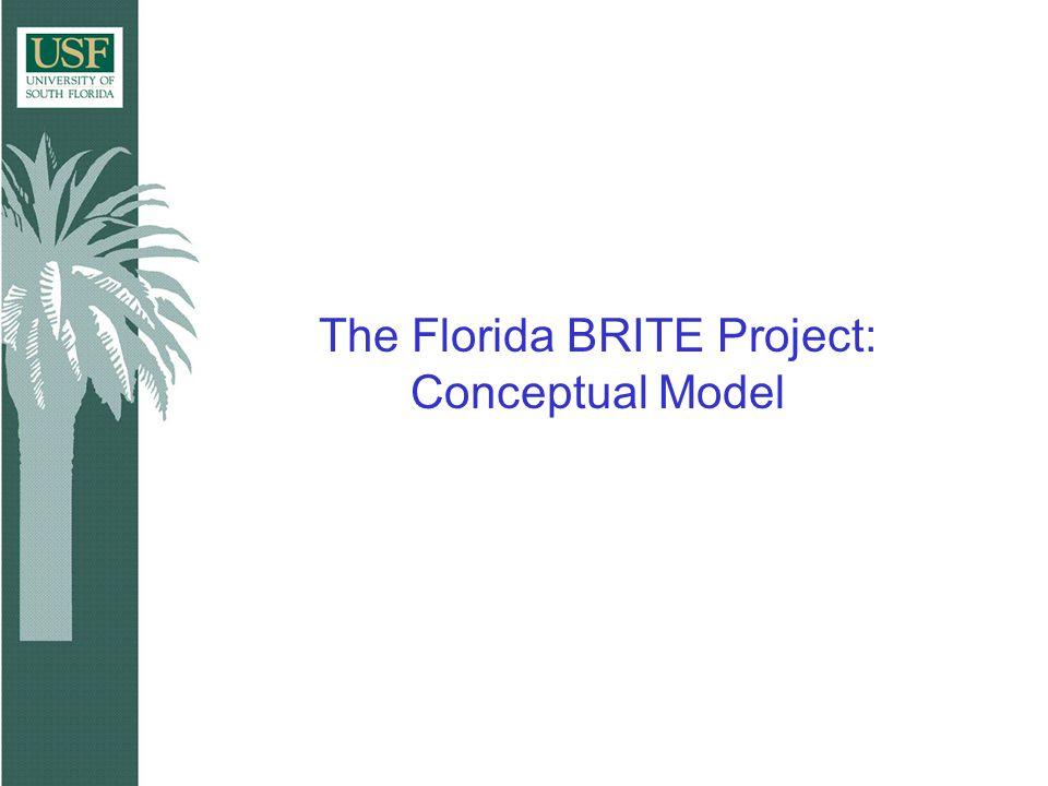The Florida BRITE Project: Conceptual Model