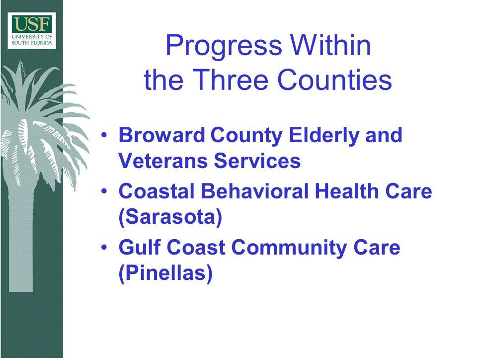 Progress Within the Three Counties Broward County Elderly and Veterans Services Coastal Behavioral Health Care (Sarasota) Gulf Coast Community Care (P