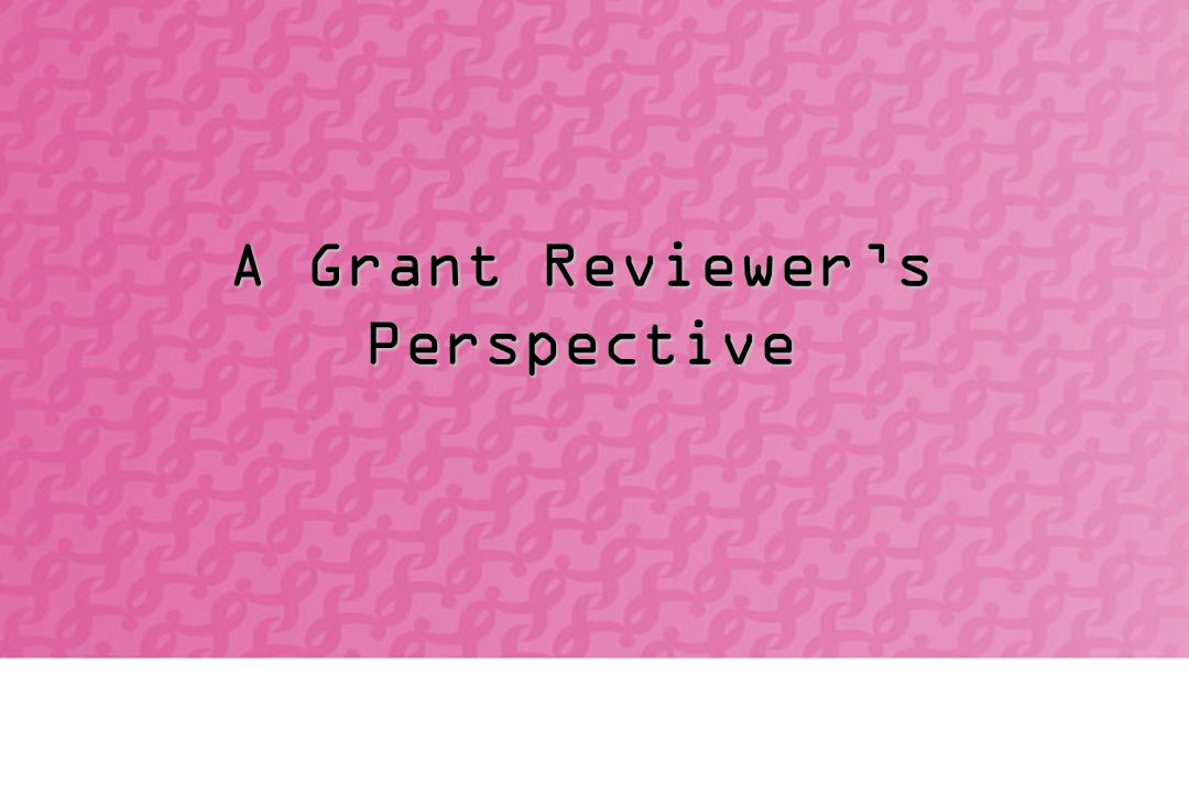 A Grant Reviewer's Perspective