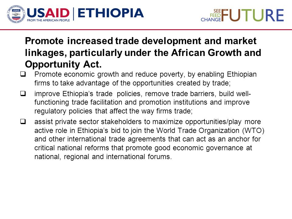 Promote increased trade development and market linkages, particularly under the African Growth and Opportunity Act.  Promote economic growth and redu