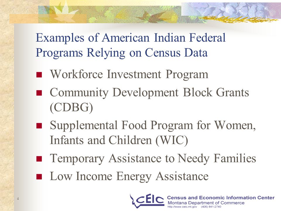 4 Examples of American Indian Federal Programs Relying on Census Data Workforce Investment Program Community Development Block Grants (CDBG) Supplemental Food Program for Women, Infants and Children (WIC) Temporary Assistance to Needy Families Low Income Energy Assistance