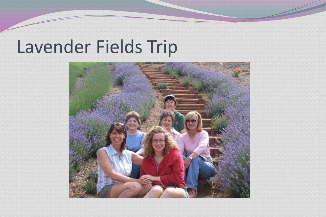 Lavender Fields Trip