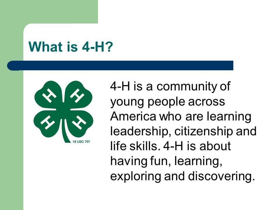 What is 4-H? 4-H is a community of young people across America who are learning leadership, citizenship and life skills. 4-H is about having fun, lear