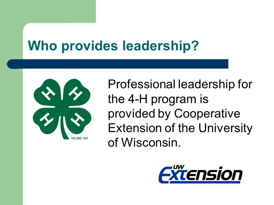 What is the purpose of the 4-H Expansion and Review Committee.