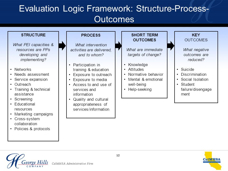 12 Evaluation Logic Framework: Structure-Process- Outcomes STRUCTURE What PEI capacities & resources are PPs developing and implementing? Networks Nee