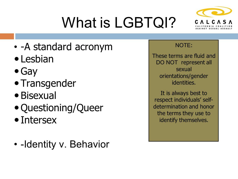 -A standard acronym Lesbian Gay Transgender Bisexual Questioning/Queer Intersex -Identity v.