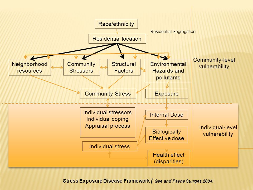 Race/ethnicity Residential location Neighborhood resources Community Stressors Structural Factors Environmental Hazards and pollutants Community StressExposure Internal Dose Individual stressors Individual coping Appraisal process Individual stress Biologically Effective dose Residential Segregation Health effect (disparities) Community-level vulnerability Individual-level vulnerability Stress Exposure Disease Framework ( Gee and Payne Sturges,2004)