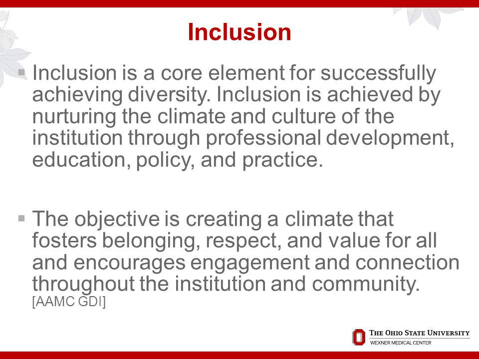Inclusion  Inclusion is a core element for successfully achieving diversity.