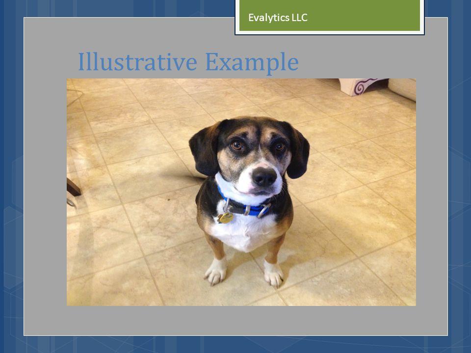 Illustrative Example Evalytics LLC
