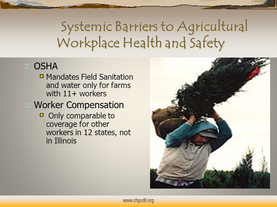 Systemic Barriers to Agricultural Workplace Health and Safety  OSHA Mandates Field Sanitation and water only for farms with 11+ workers  Worker Compensation Only comparable to coverage for other workers in 12 states, not in Illinois