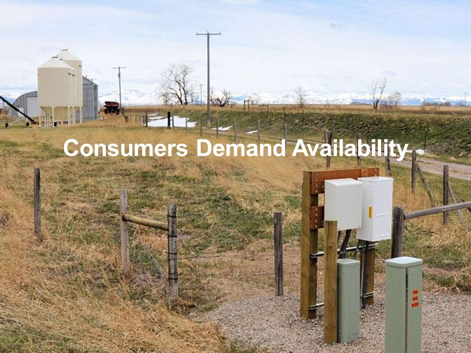Consumers Demand Availability