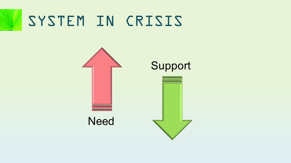 SYSTEM IN CRISIS Need Support