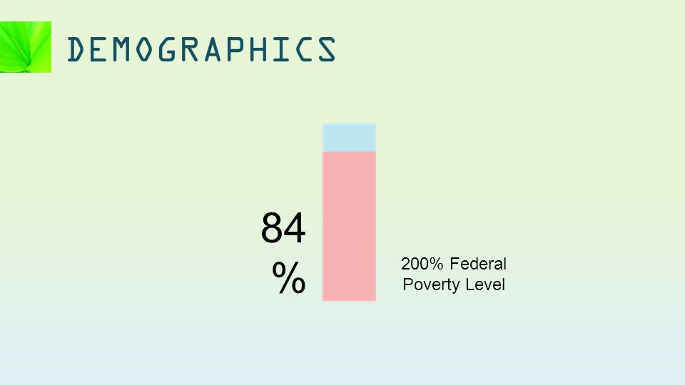 DEMOGRAPHICS 84 % 200% Federal Poverty Level