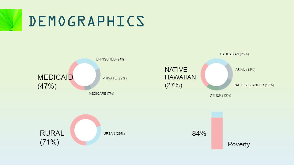 DEMOGRAPHICS 84% Poverty NATIVE HAWAIIAN (27%) CAUCASIAN (25%) ASIAN (18%) PACIFIC ISLANDER (17%) OTHER (13%) RURAL (71%) URBAN (29%) MEDICAID (47%) UNINSURED (24%) PRIVATE (22%) MEDICARE (7%)