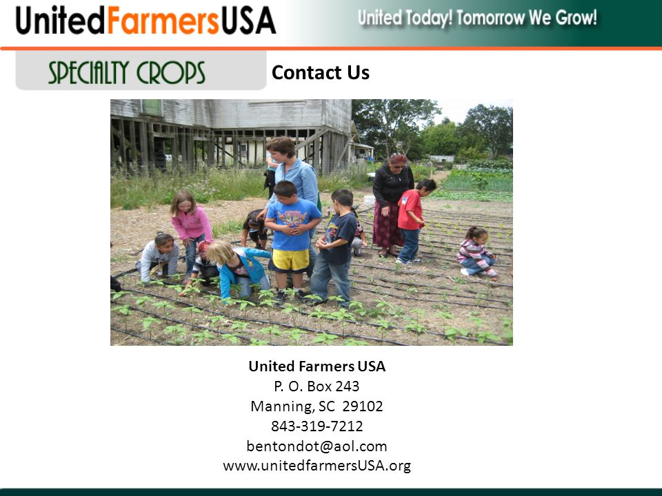 United Farmers USA P. O. Box 243 Manning, SC 29102 843-319-7212 bentondot@aol.com www.unitedfarmersUSA.org Contact Us