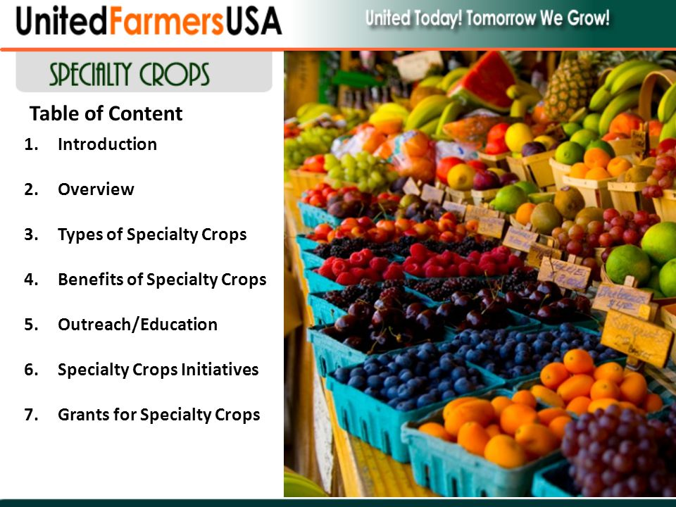 Table of Content 1.Introduction 2.Overview 3.Types of Specialty Crops 4.Benefits of Specialty Crops 5.Outreach/Education 6.Specialty Crops Initiatives