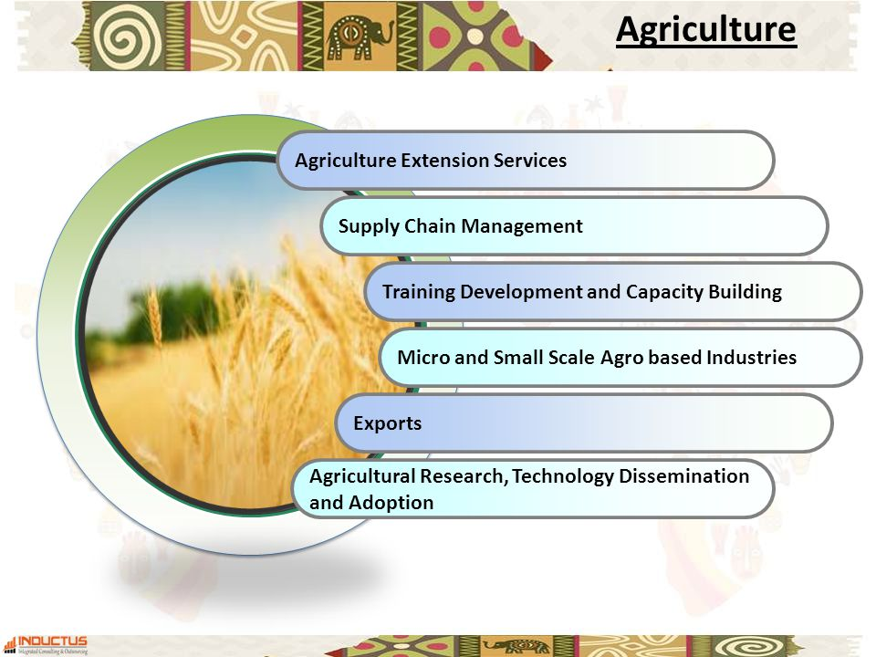 Agriculture Extension Services Supply Chain Management Training Development and Capacity Building Micro and Small Scale Agro based Industries Exports